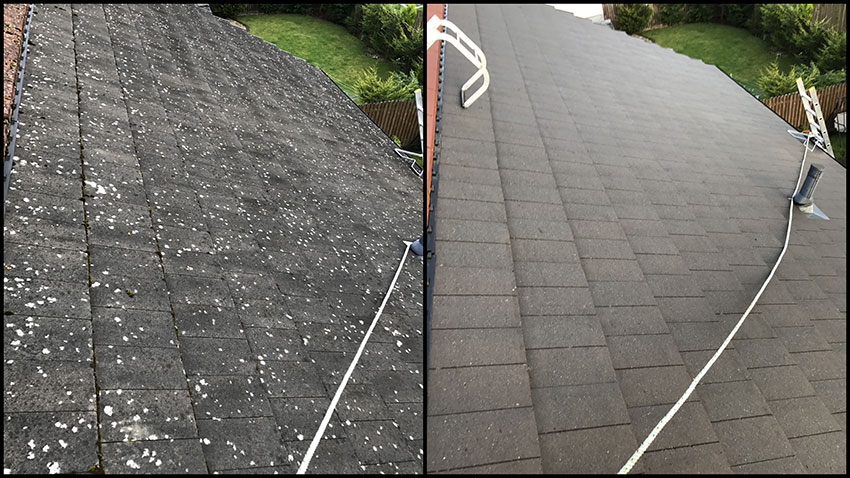 Roof-Cleaning-01-spcs-limited